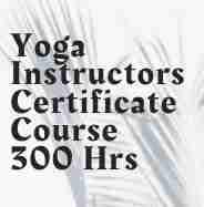 Yoga Instructor Course - 17th Batch