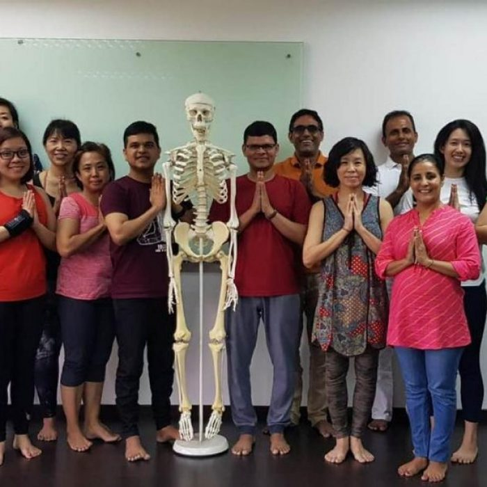 6 Reasons to know about anatomy as a yoga teacher